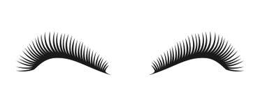 Symbole noir de cils de vecteur Logo de cil illustration stock