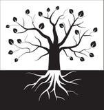 Symbole noir et blanc d'arbre Photos libres de droits