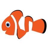 Symbolen behandla som ett barn apelsinen gjorde randig clownfisken på en vit bakgrund Vecto Fotografering för Bildbyråer