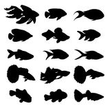 Symboler av fisken Arkivbilder