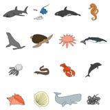 Symboler av havsinvånare i en plan stil med en svart slaglängd Vektorbild på en rund kulör bakgrund Beståndsdel av stock illustrationer