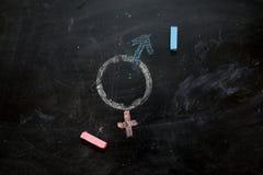 Symboler eller tecknet för mannen och kvinnligt för genus könsbestämmer utdraget på en svart tavla Arkivbild