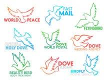 Symboler för design för affär för vektor för duvafågelflyg royaltyfri illustrationer