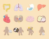 Symboler för hälsa och läkarundersökning royaltyfri illustrationer