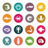 Symboler för havsliv vektor illustrationer