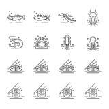 Symboler för havsmat Arkivbilder