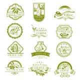 Symboler för vektor för olivolja- och italienarekokkonstoliv vektor illustrationer