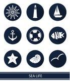 symboler med havsbeståndsdelar Arkivbilder