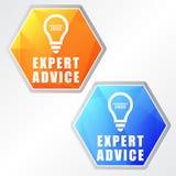 Symboles d'avis d'expert et d'ampoule, deux icônes de Web d'hexagones de couleurs Photo libre de droits