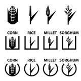 Symboles de céréale de sorgho de millet de riz de maïs illustration de vecteur