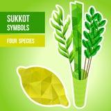 Symboles de Sukkot Image stock