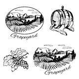 Symboles de vignoble, de baril de vin et de raisin Photos libres de droits