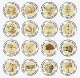 Symboles des produits naturels Photo libre de droits