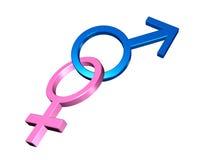 Symboles mâles et femelles Photographie stock