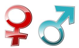 Symboles mâles et femelles (vecteur) Photographie stock