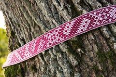 Symboles nationaux de ceinture de la Lettonie - du Lielvarde autour de l'arbre Images stock