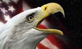 Symboles patriotiques des Etats-Unis Photos libres de droits