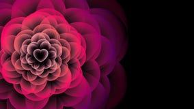 Symbolet för hjärtablommaröntgenstrålen, rosa färg för illustration för förälskelsebegreppsdesign färgar animeringen 4K