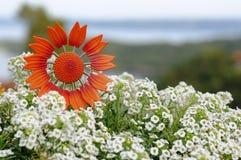 Symbolic flower. For powerful communication Stock Image