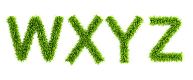Symbolic grassy alphabet. 3d rendering Stock Photography