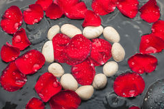 The symbolic heart of the white stones among red rose petals Stock Images