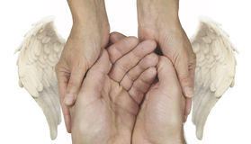 Symbolic Helping Hands with Angel Wings royalty free stock images