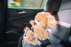 Teddy is pushed into the belt at full braking royalty free stock photo