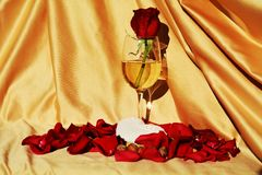 Symbolic lost love. Represented by the red rose that is passion, placed in a glass of wine which means oblivion, next to the petals around Royalty Free Stock Photography