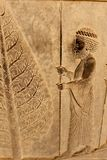 Symbolic relief on a wall of the ancient city of Persepolis Royalty Free Stock Photos