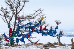 Ribbons on the tree Stock Photo