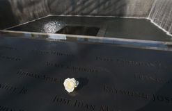 Symbolic rose and Waterfall Footprint of WTC, National September 11 Memorial, New York City, New York, USA Royalty Free Stock Images