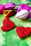 Symboliska hjärtor och tulpan Royaltyfri Foto