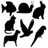 Symbols. Animal Symbols Stock Images