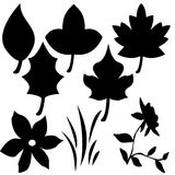 Symbols. Plant and Flower Symbols Royalty Free Stock Images