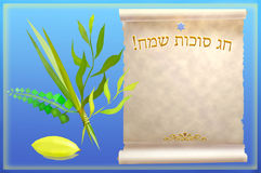 Symbols and attributes of jewish festival Sukkot. Palm, willow, myrtle , etrog - symbols and attributes of Jewish holiday Sukkot, Congratulation to the holiday royalty free illustration