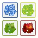 Symbols of four year seasons Stock Photo