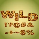 Symbols imitating tiger fur Royalty Free Stock Photo