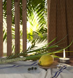Symbols of the Jewish holiday Sukkot with palm leaves and candleSymbols of the Jewish holiday Sukkot with palm leaves