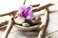 Zen attitude with mineral cup of stones and flower stock photo image 53470042 - Symbole zen attitude ...