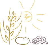 Symbols for religion (or agriculture). Symbol set suitable for designs related to agriculture or religion, including: ear, sun, bread, grape Stock Image