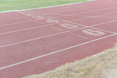 Symbols on running track. At sport club royalty free stock image