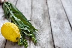 Symbols of Sukkot Stock Image
