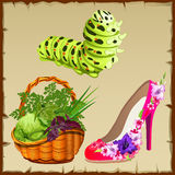 Symbols of summer, shoe, vegetables and centipede Royalty Free Stock Photos