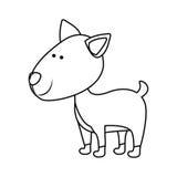 Symbolsbild för älsklings- djur Arkivfoton