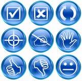 symbolsset för 12 blue Royaltyfria Bilder