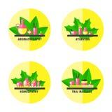 Symbolsuppsättning för alternativ medicin stock illustrationer