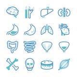 Symbolsuppsättning för mänskligt organ Arkivbild