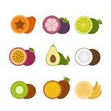 Symbolsuppsättning för tropiska frukter Plan stil, vektorillustration Arkivbilder