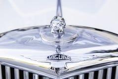 Symbool van jaguar Stock Afbeelding