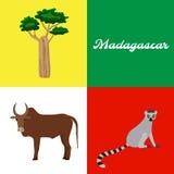 Symbool van Madagascar: baobabboom, zeboe, maki Vector Royalty-vrije Stock Foto